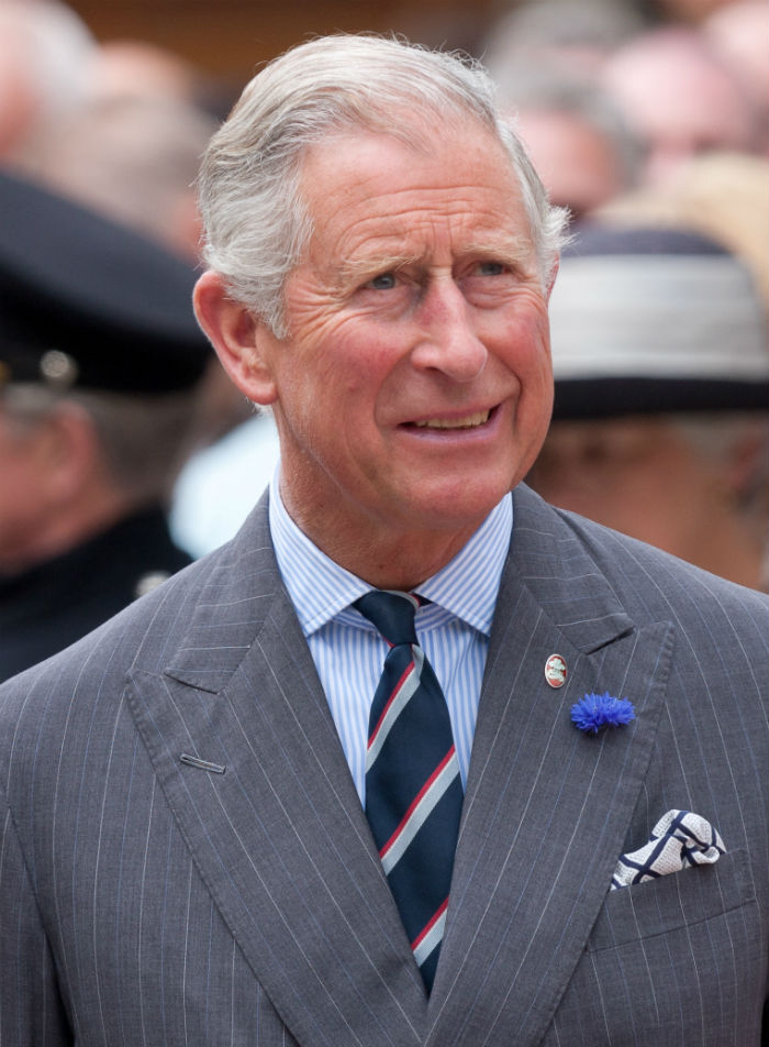 Prince Charles Royalty Crown Prince