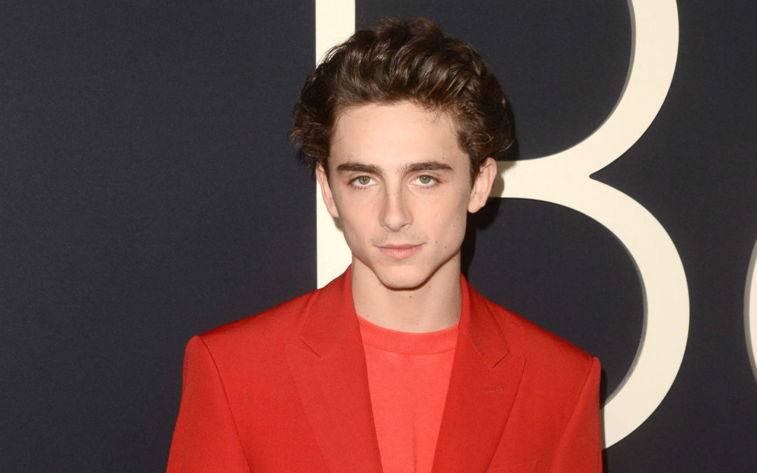 Timothée Chalamet Utilizes His Platform To Save People From Drug Abuse